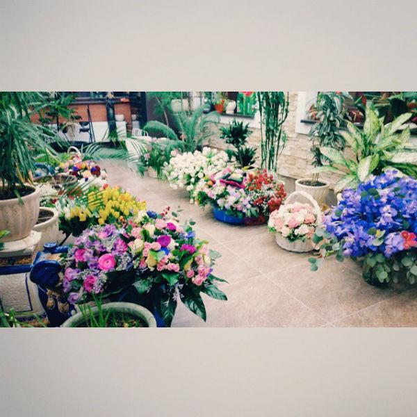В зимнем саду певицы расположились корзины с цветами