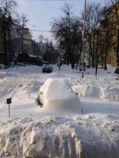 Сугрубы в Киеве выше человеческого роста