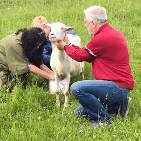Дмитрий Крылов помогает Лолите доить козу
