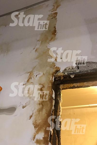 Стена в двухкомнатной квартире Елены Жуковой