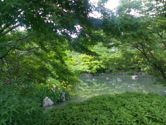 Природа парков Японии
