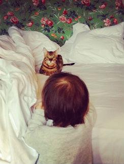 Виктория не снимает лицо дочери, так что основное внимание - коту