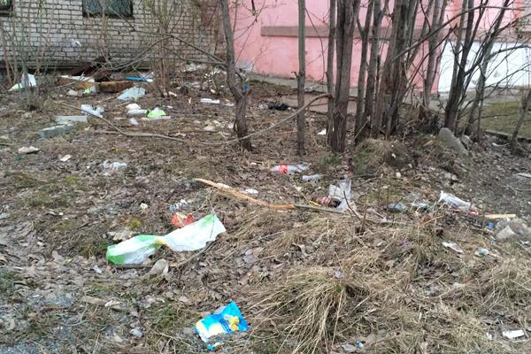 На санитарную уборку у городской администрации остается около 2–3 млн рублей, так что они город может себе позволить только пять дворников на всю Салду.