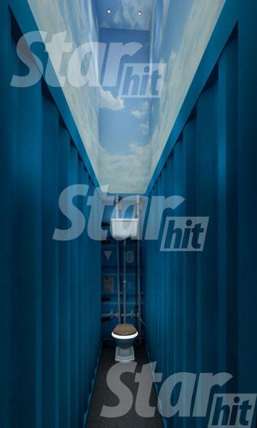 Светлаков сам  придумал необычный туалет: решил раскрасить стены под гаражи, а потолок – под небо