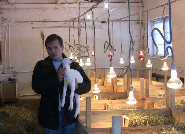 В хозяйстве у Балаева - козы. Одну из них он обещал подарить Жириновскому