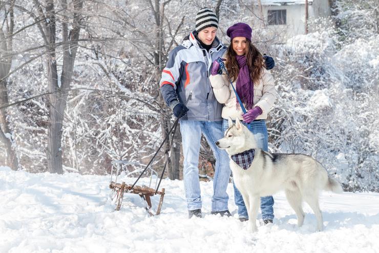 Зима пришла... Как победить самое темное время года?