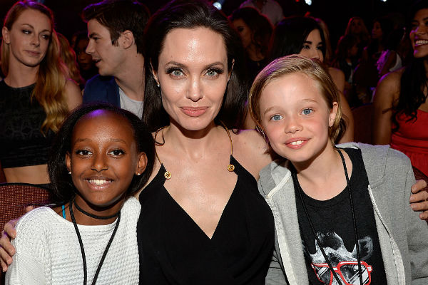 Анджелина Джоли будет добиваться с суде единоличной опеки над детьми