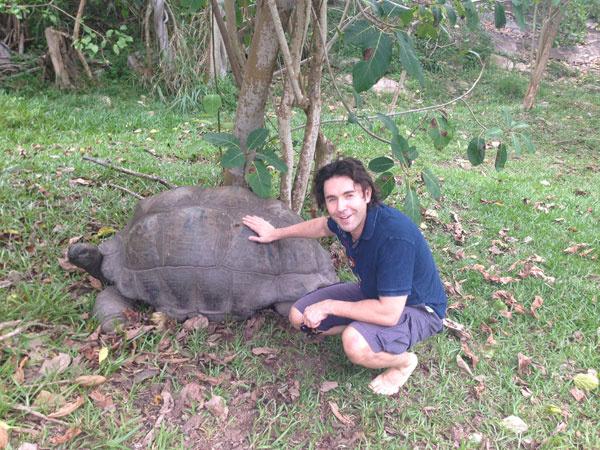 Имя для черепахи подобрать оказалось очень сложно