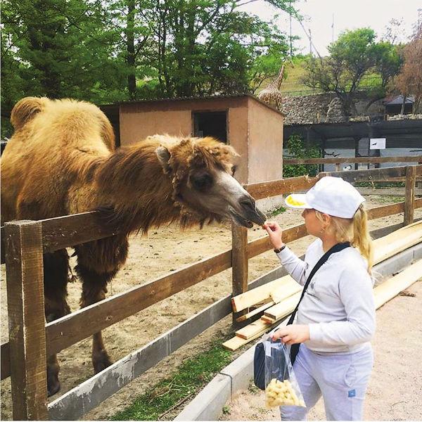 Девочка очень любит животных
