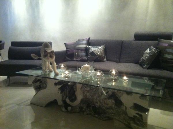 Оскар иногда стоит у Оксаны на столе, а порой лежит на диване