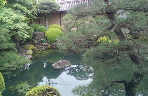 Красоты одного из японских парков