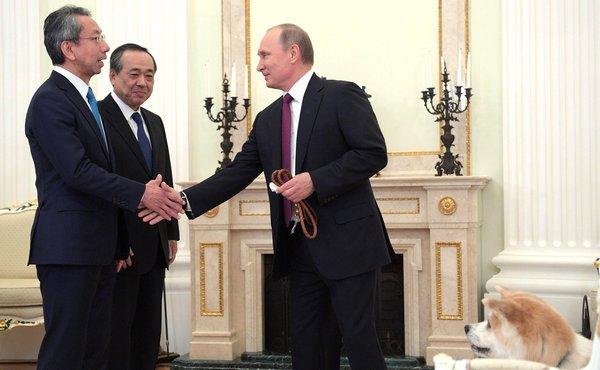 Гости из-за рубежа поблагодарили Путина за уделенное им время