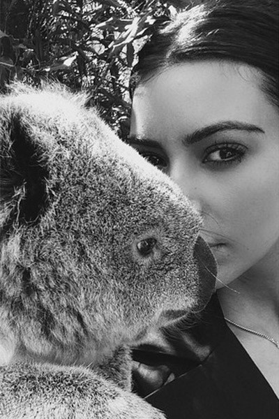 Ким и коала - еще один вариант