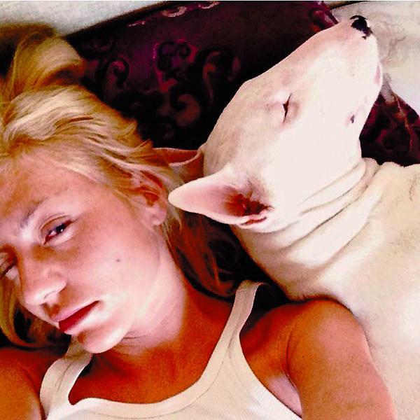 Бультерьера когдато подарили Тане, но хозяином пес признал ее отца