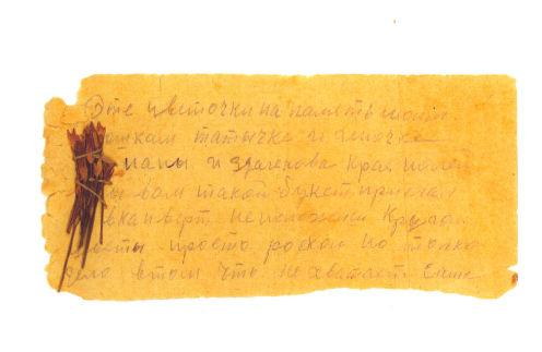 «...Цветочки на память моим крошкам – Таточке и Геночке – от папы из далекого края полей. Я бы вам букет прислал, но в конверт не положишь...»