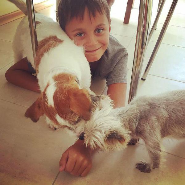 Не так давно в семье уже случилось пополнение - Костюшкины завели вторую собаку