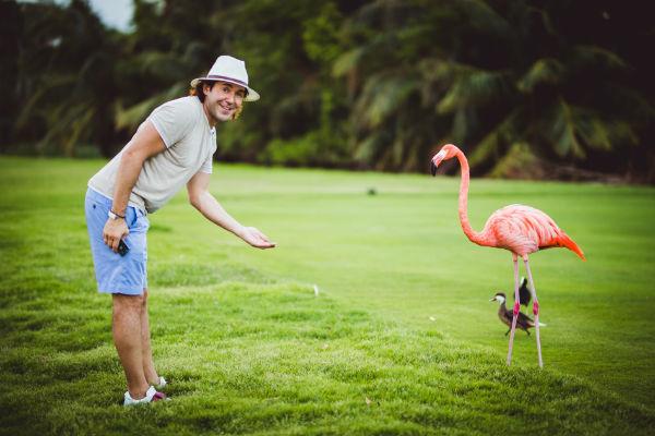 Фламинго оказались достаточно дружелюбными