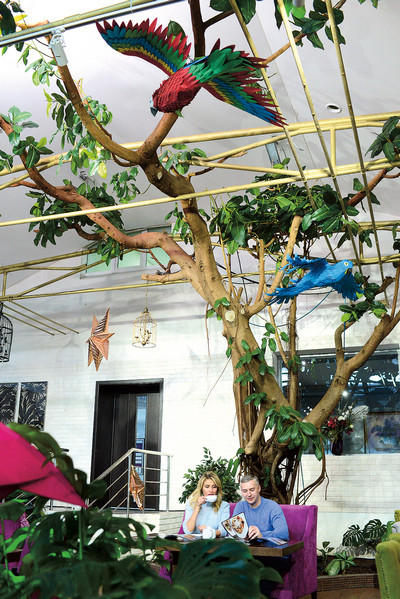 Катя и Артем пришли в восторг от ресторана «Фикус», названного в честь гигантского дерева, которое растет прямо в зале