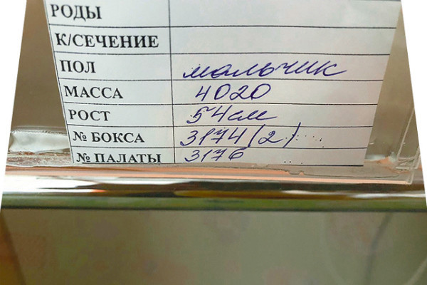 Первый документ Саши Малахова