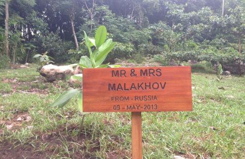 Эта табличка теперь навечно у нашего дерева