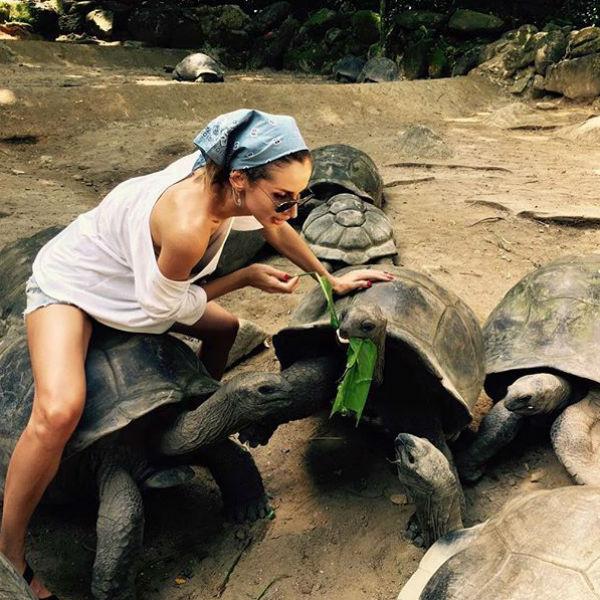 Светлана давно хотела показать семье больших черепах