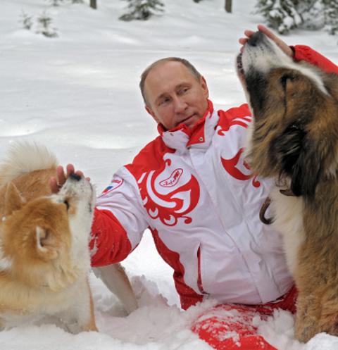 Владимир Путин с собаками Юмэ и Баффи на прогулке в Московской области