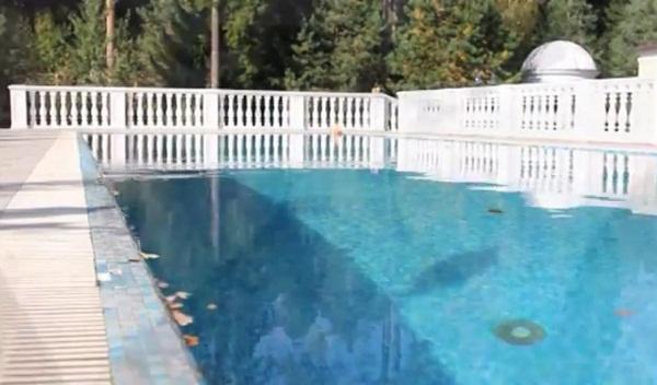 Во дворе дома артистки находится огромный бассейн