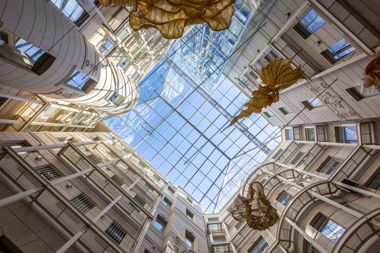 Стиль жизни: Петербург – семь чувств: коллекция впечатлений – фото №3