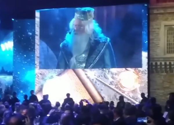 Андрей Костин исполнил роль мага Дамблдора