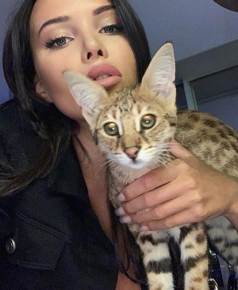 Решетова обожает кошек
