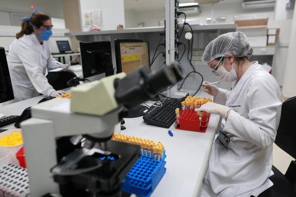 Ученые всего мира работают над созданием эффективной вакцины.
