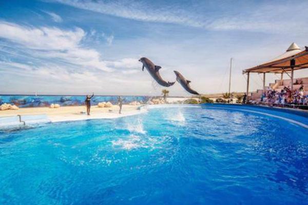 Детский парк Mediterraneo Marine Park