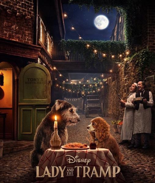 Постер к мультфильму «Леди и Бродяга»
