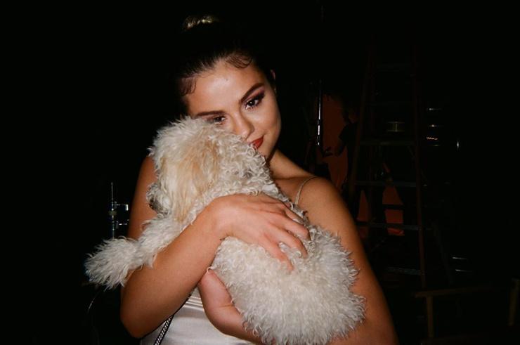 Рядом с Селеной всегда находится ее любимая собака