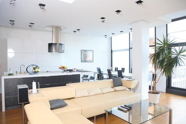 Первый этаж делится на три зоны: кабинет, кухня и гостиная