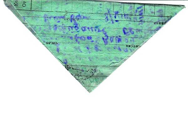 Общество: В Челябинской области нашли 75 фронтовых писем, которых адресаты ждут с самой войны – фото №11