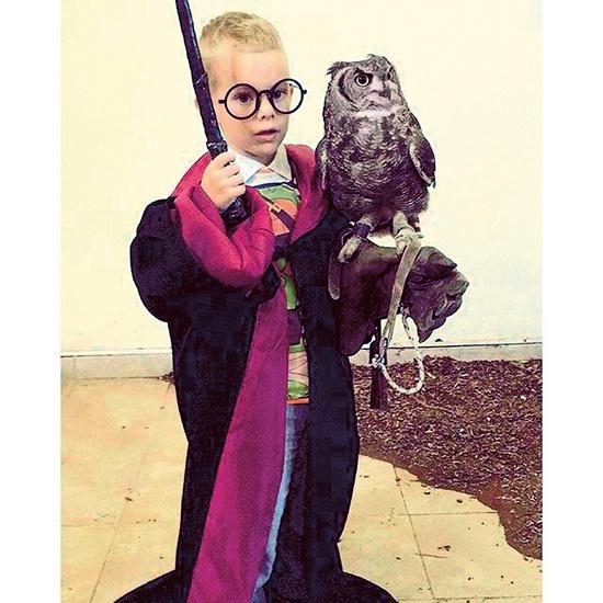 Иван нашел общий язык даже с совой Гарри Поттера