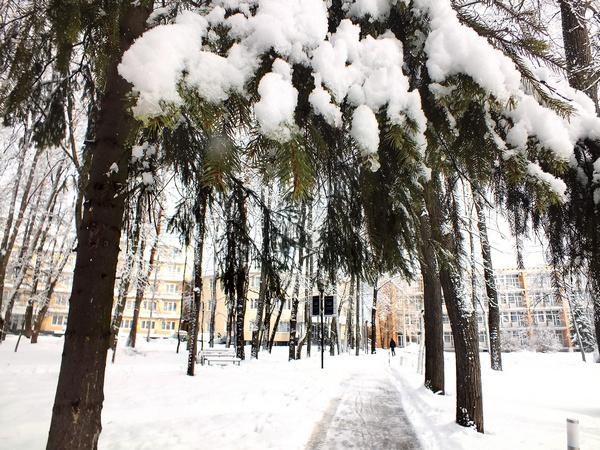 Парк-отель «Воздвиженское» расположен рядом с заповедником в Серпуховском районе