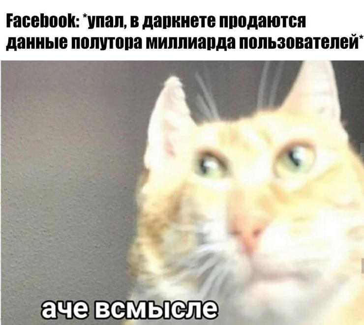 Новости: Наташа, Марк все уронил: шутки и мемы про глобальный сбой в работе Facebook, WhatsApp и Instagram – фото №9