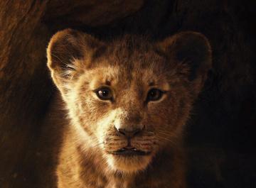 Готов к премьере фильма «Король Лев»?