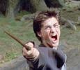 О волшебных животных из «Гарри Поттера» снимут серию фильмов