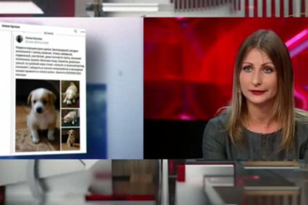 Хозяйка приюта Инна Михайлова, которая отдала одной из девушек собаку из приюта