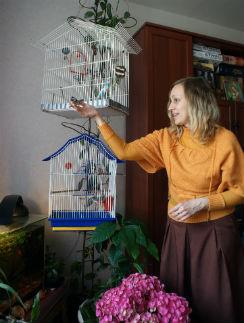 В работе Оле помогает ее маленький рай – птички и черепашка Леонардо