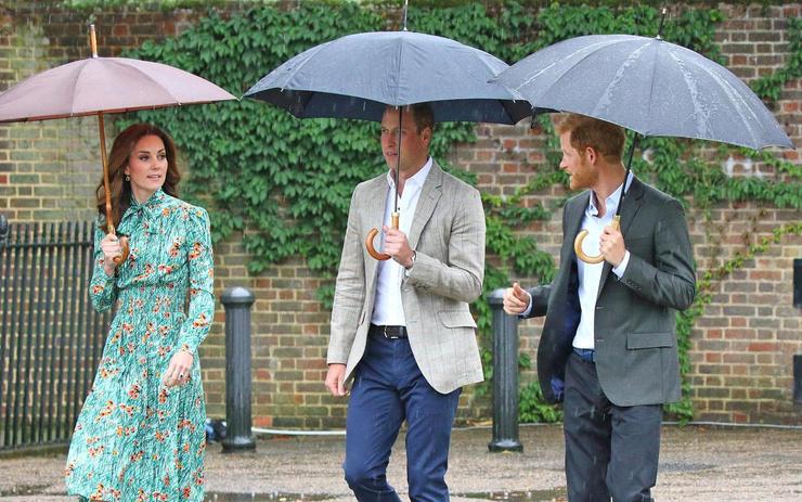 Уильям и Гарри очень ревностно относятся к памяти матери