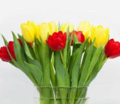 Звезды поздравили женщин с 8 марта