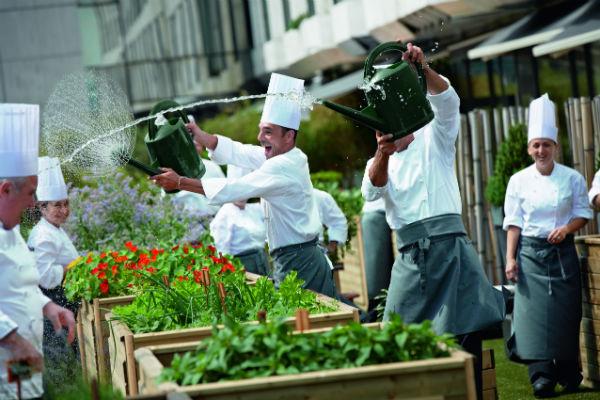 Стиль жизни: Рафаэль Фишер стал новым шеф-поваром легендарного ресторана Le Grill – фото №2