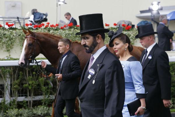 Роскошные конюшни в Дубае известны во всем мире