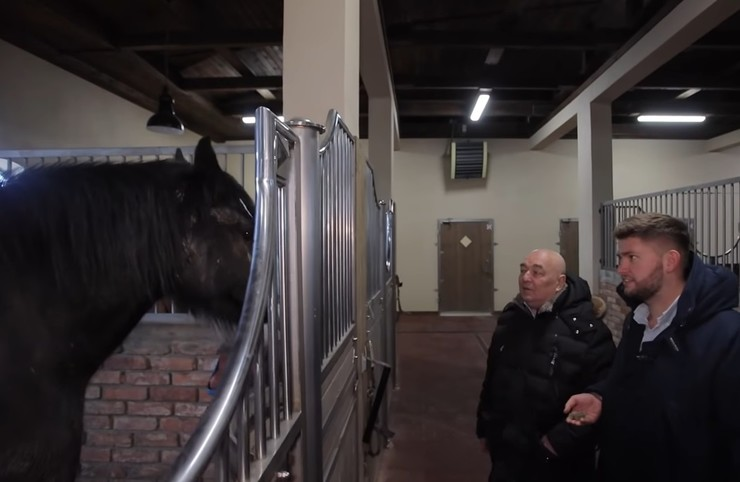 Предприниматель любит лошадей