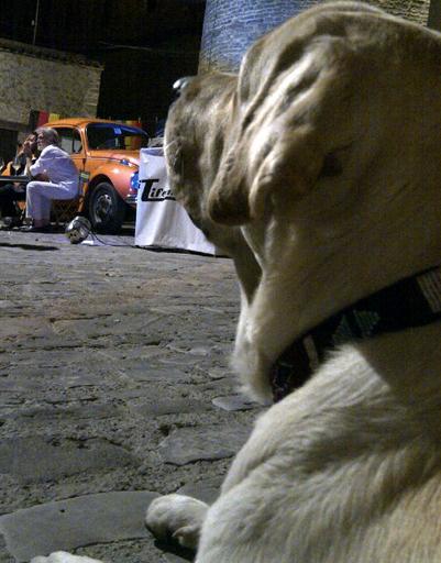 Улиус наблюдает за итальянцами с веранды кафе