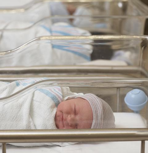 Родители младенцев пока не установлены